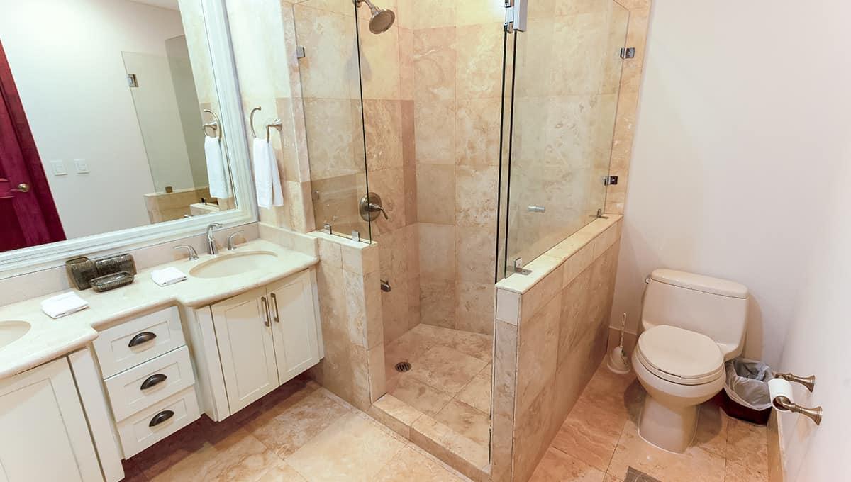 cs501-bathroomshower-langosta
