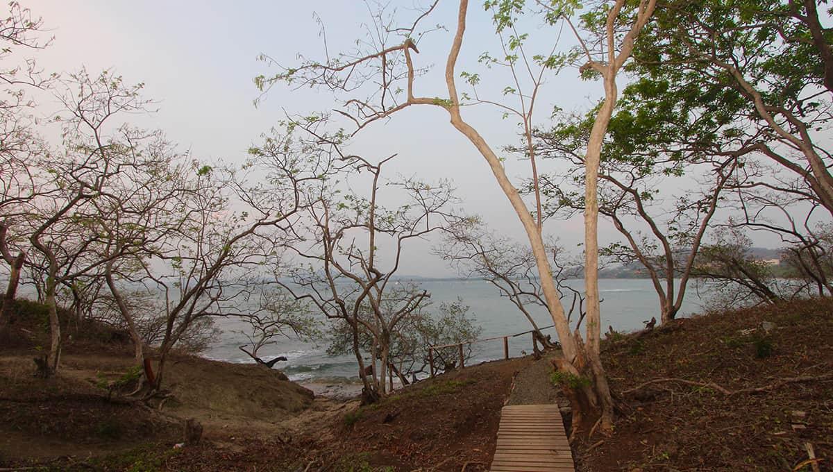 carolinadelmar-beachpath-langosta