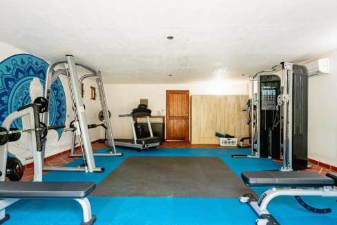 monomalo-gym-langosta