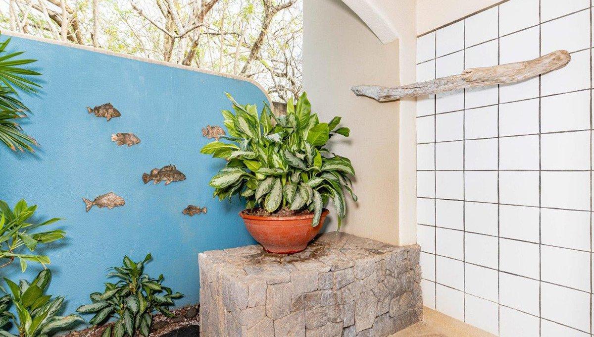 monomalo-outdoorshowerplant-langosta
